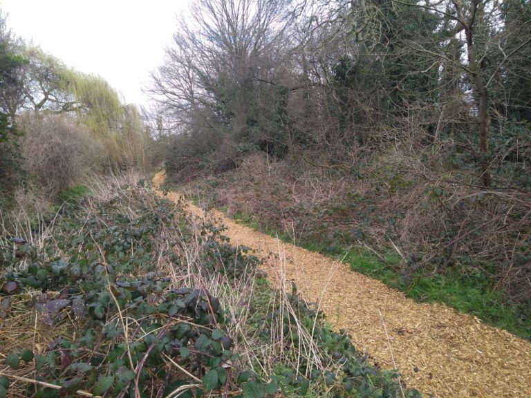 Path covered with woodchip