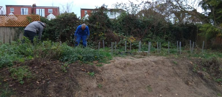 Volunteers planting tree spaling on the bank behind the wildlife pond
