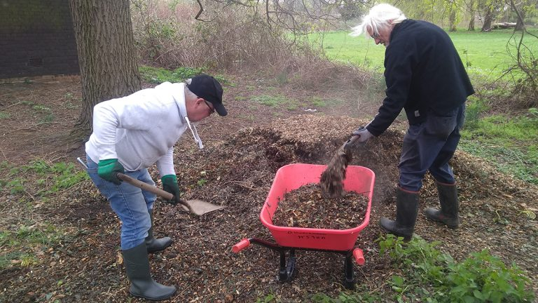 Volunteers shoveling woodchip into a wheelbarrow