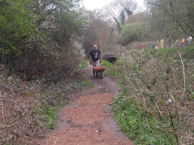 Volunteer wheelbarrowing woodchip