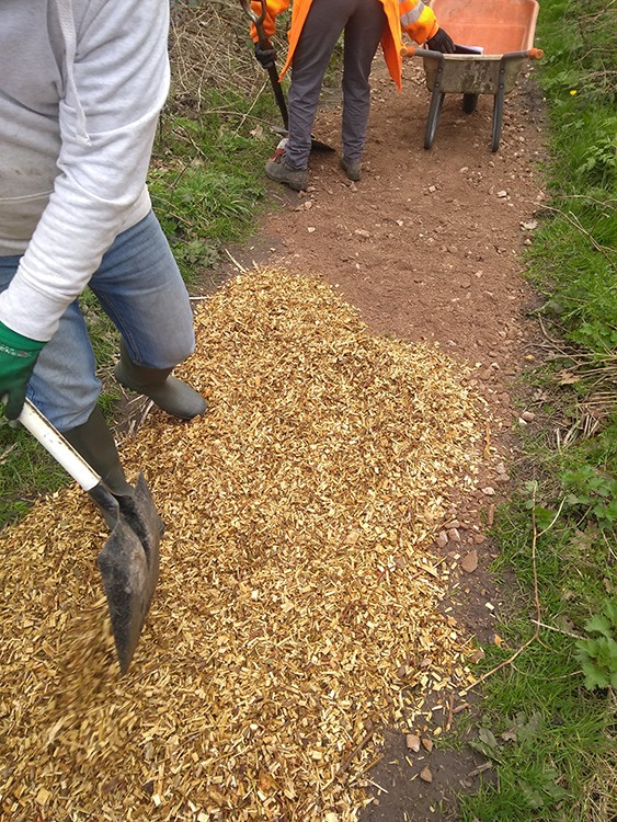 Volunteer spreading woodchip with a shovel