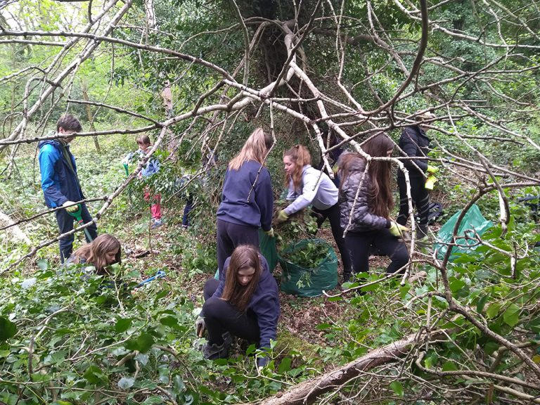 Duke of Edinburgh students clearing archangel