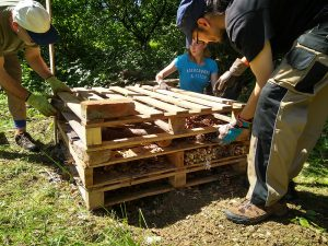 Volunteers filling the pallets with sticks and pine cones