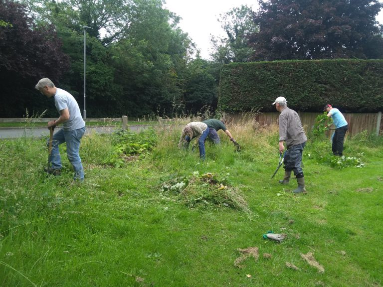 Volunteers digging up brambles and cutting back nettles