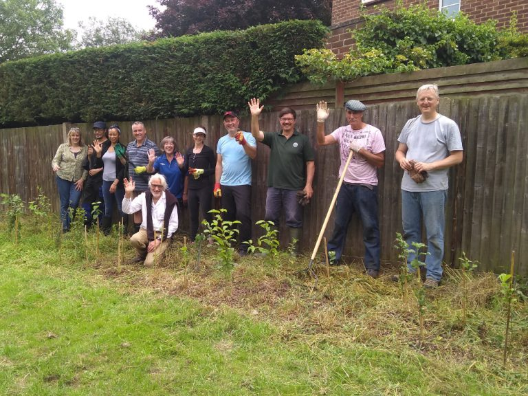 Volunteers posing for a group photo behind freshly cleared saplings
