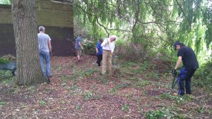 Volunteers clearing and gathering nettles and brambles