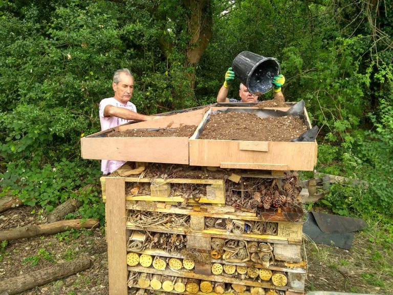 Volunteers filling the bug hotel roof with soil
