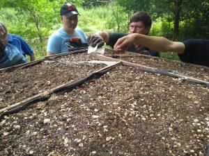 Volunteers sowing wildflower seeds on the roof