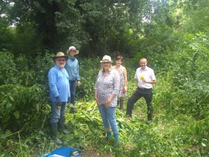 Volunteers posing for a group photo around some of the pulled balsam