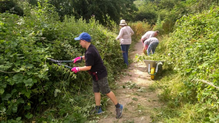 Volunteers cutting back vegetation