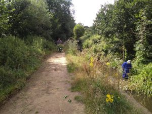 Volunteers in the stream and clearing the path