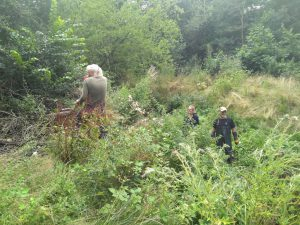Volunteers on the bank and in the stream tackling balsam