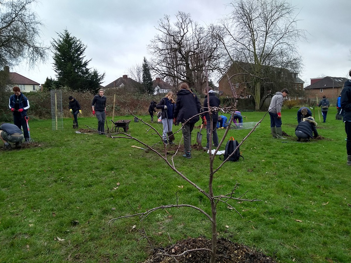 Volunteers finishing of the planting