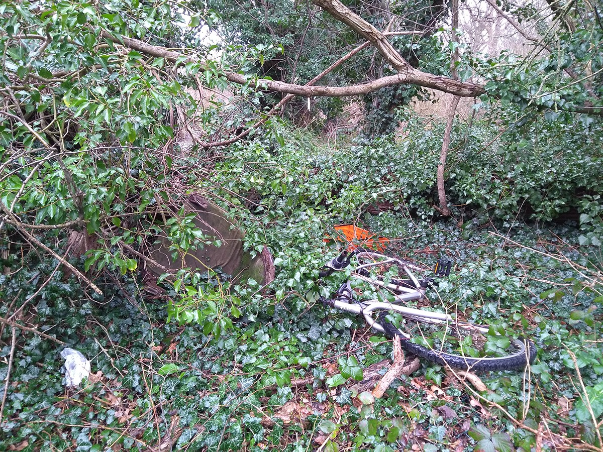 Bicycle burried in brambles